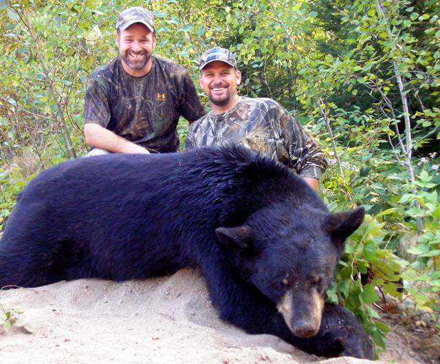 Karl Metzler - Ontario Black Bear