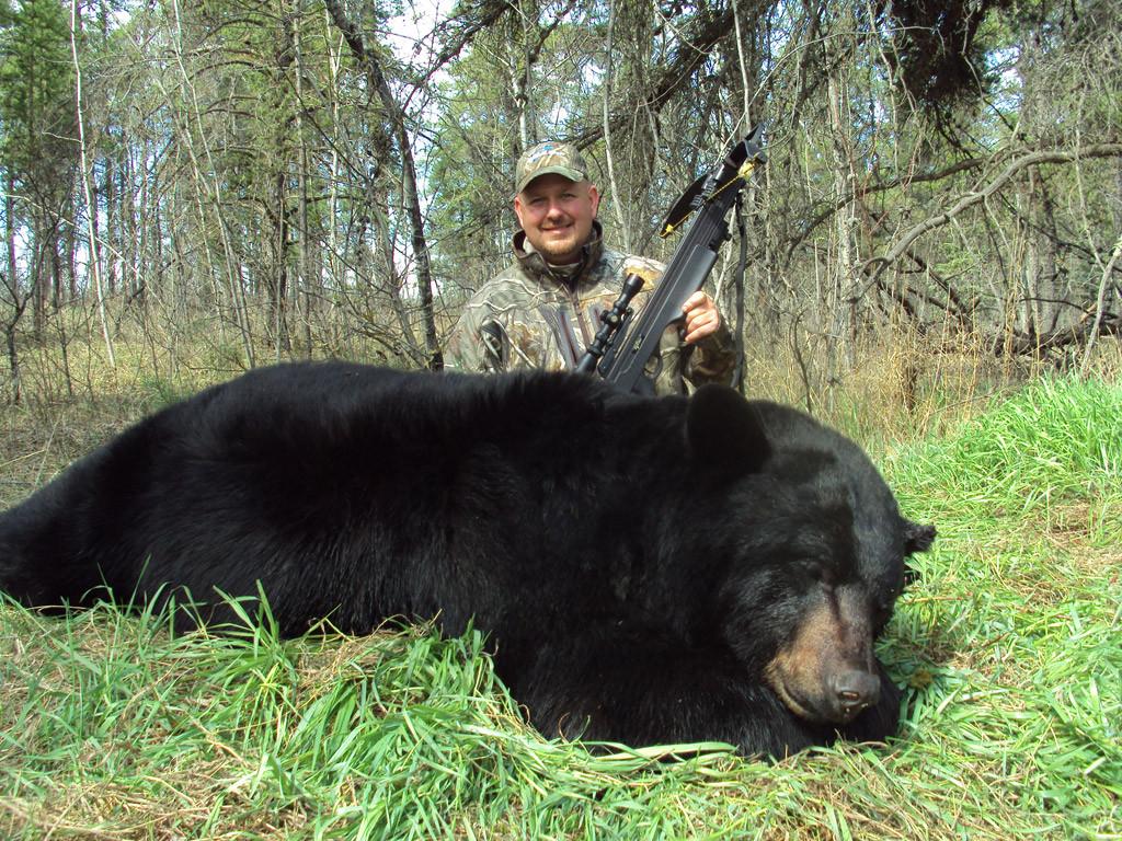 Dan Wallace - Saskatchewan Black Bear