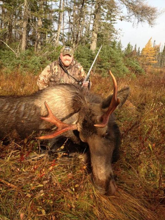 Paul Payne - Newfoundland Adventures Moose